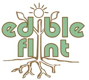 Dig In with edible flint 2015 Garden Starters